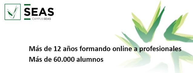 cursoso online seas