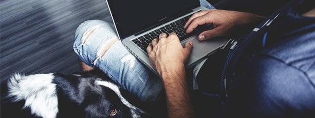 cabecera-animales-trabajo-blog-seas