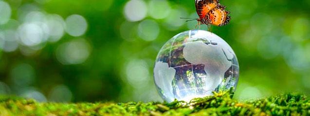 que-es-la-bioetica-blog-seas