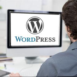 diseño de páginas web con curso de wordpress online