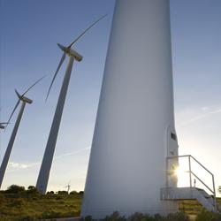 experto energias renovables